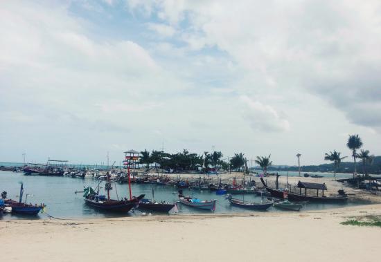 Samaya Bura: пляж при отеле