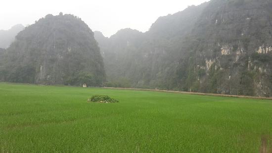Vietnam Open Day Tours: 20160403_151332_large.jpg