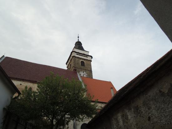 Rekreacni dum Slavonice: Výhled z pokoje - Ubytování Slavonice, Neradová