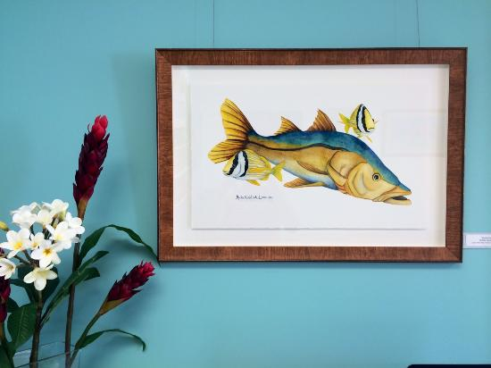 Michelle Nicole Lowe Art Gallery: Snook & Porkfish, Watercolors by Michelle Nicole Lowe
