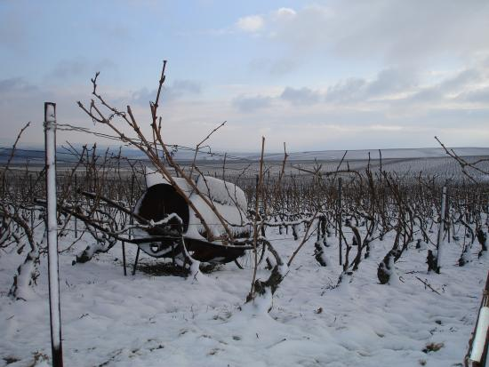 Mailly-Champagne, Frankrijk: Yes its snows in Champagne area