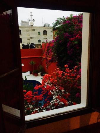 Casa Oaxaca: photo4.jpg