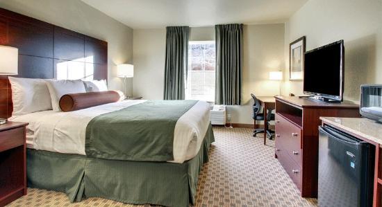 Cobblestone Inn & Suites Oberlin