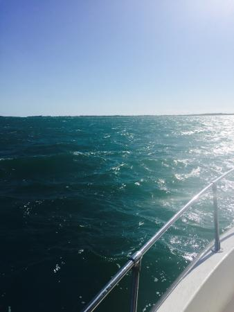 Best fishing charter experience!