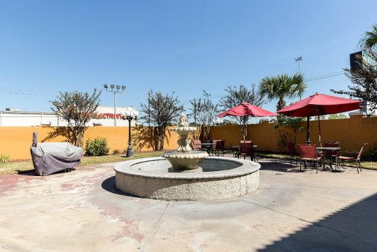Quality Inn & Suites North : Courtyard