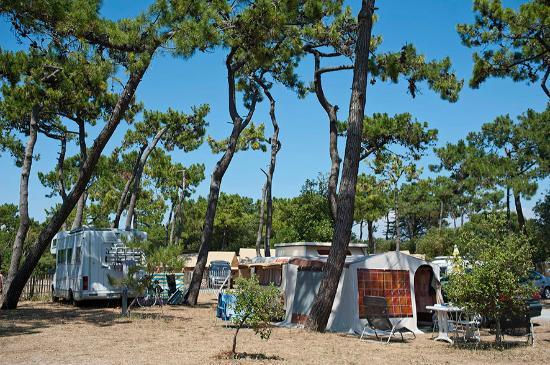 Camping picture of camping huttopia noirmoutier - Camping bois de la chaise noirmoutier ...