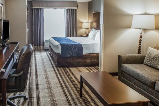 Comfort Suites Hudson