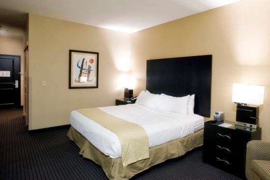 Holiday Inn Hotel & Suites St. Paul NE - Lake Elmo: Single Bed Guest Room