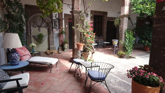 Casa Carmen: patio