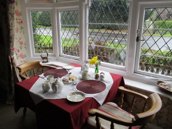 Playden, UK: Tea and cakes in the lovely dining room on arrival