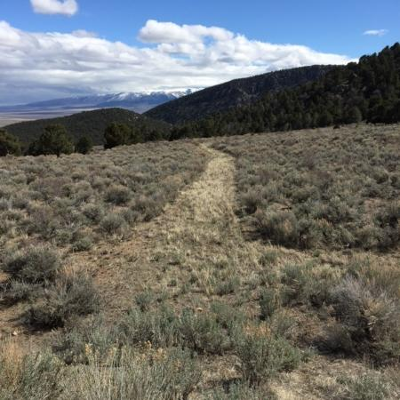 Almo, ID: Stated as the trail that the wagon trains used in the 1800's