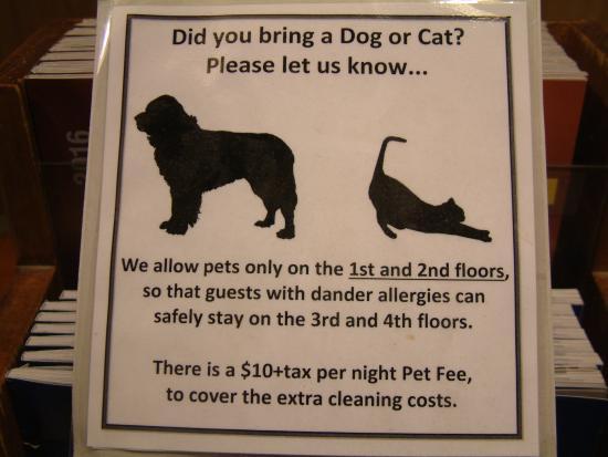 Teton Village, WY: Pets Allowed