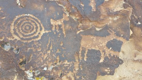 ‪‪Wellington‬, ‪Utah‬: Just a sample of the many petroglyphs and pictographs you can find in Nine Mile Canyon.‬