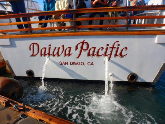 The beautiful daiwa pacific thank you capt and crew for H m landing fishing report