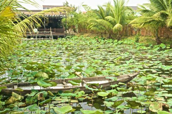 Phu Thinh 1 Hotel : la salle à manger, au fond