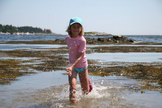 Spruce Point Inn Resort and Spa: Activities Tide Pools at SPI