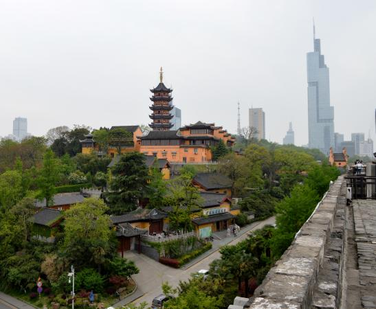 Nanjing Taicheng Wall (Ming City History Museum)