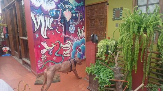 Casa Nuestra Peru B&B: DSC_1103_large.jpg