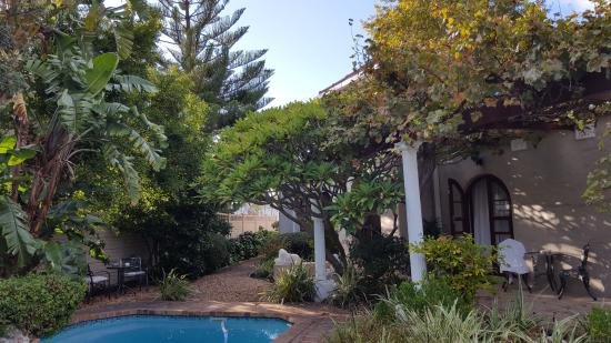 Tiana Guest House: Garden/pool area