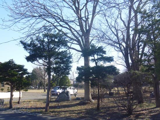 Sumire Park
