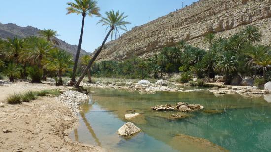 Ash-Sharqiyah Governorate, Ομάν: stenen, water en bomen : een oase waardig.