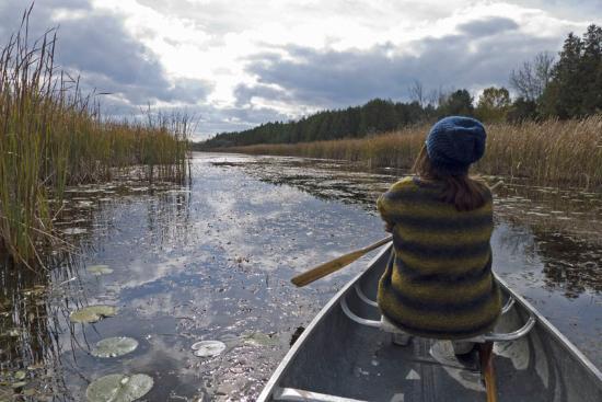 Lindsay, Kanada: canoeing the wetland