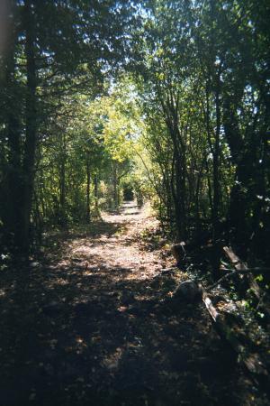 Lindsay, Kanada: Hiking the trails