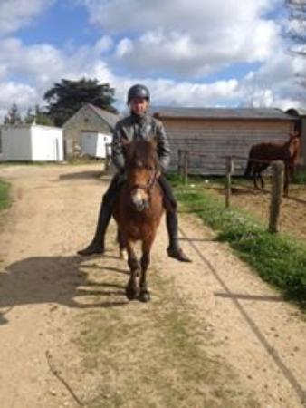 Roiffe, Francia: Balade poney proche center parc