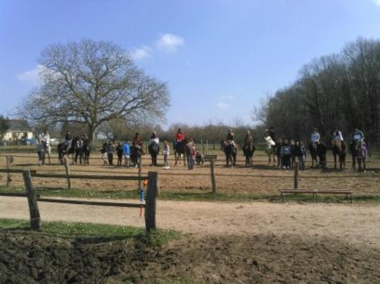 Roiffe, France : Acceuil des groupes cheval