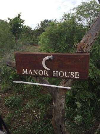 Manyeleti Game Reserve, Sudáfrica: TRIP OF A LIFETIME/NOWHERE BETTER