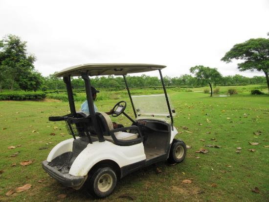 Kaziranga Golf Resort照片