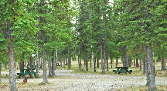 Tok, AK: Our campground