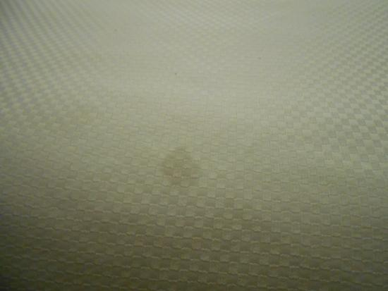 Microtel Inn & Suites by Wyndham Greensboro: EVERY cloth, wall, and section of floor was stained.