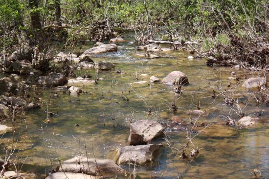 Smithville, OK: Creek by the cabins.