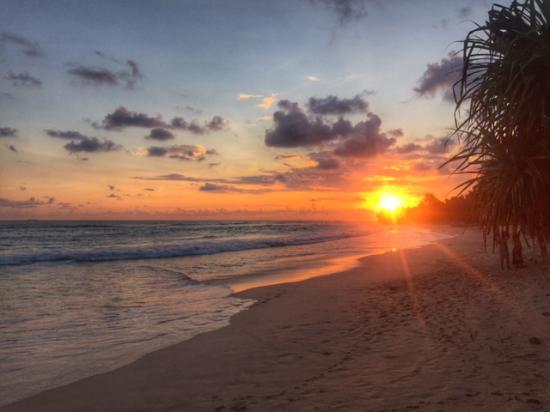 Haus am meer bei sonnenuntergang  Sonnenuntergang - Bild von Haus am Meer Wilde Ananas, Koggala ...