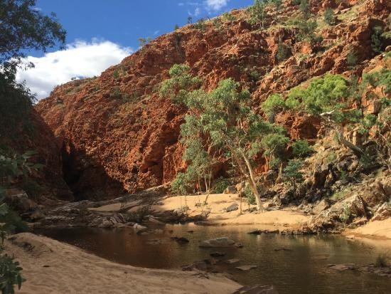 West MacDonnell National Park, Australie : Redbank Gorge