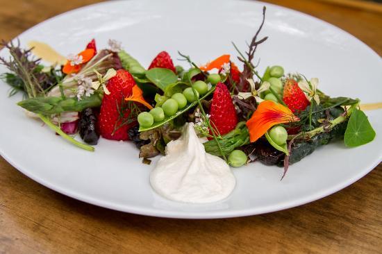 Mesa Verde Restaurant Vegan Vegetarian Santa Barbara
