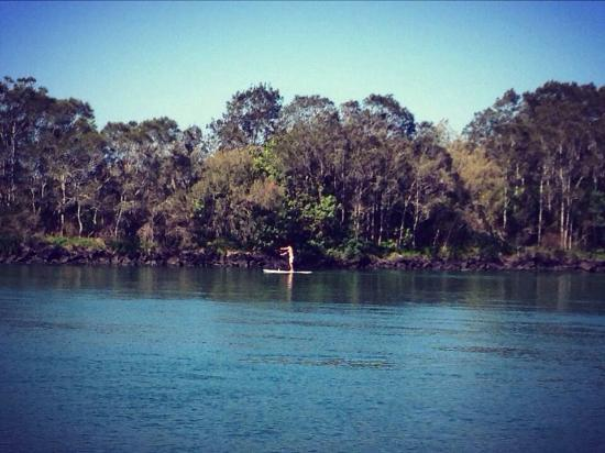 North Coast Holiday Parks Massey Greene: Paddle boarding