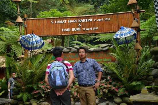 kampung daun lush tropical garden - Tropical Garden 2016