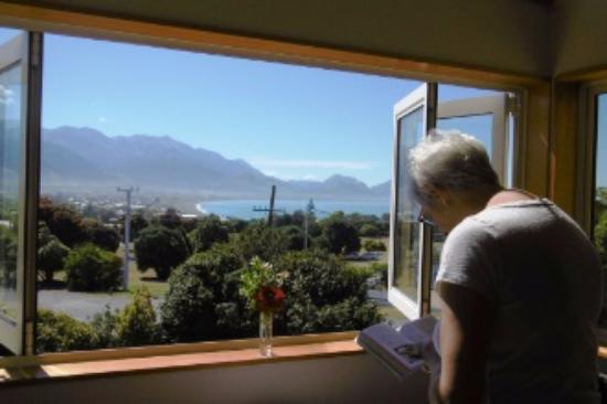 Nikau Lodge: Room with a view (Pacific at Kaikoura)