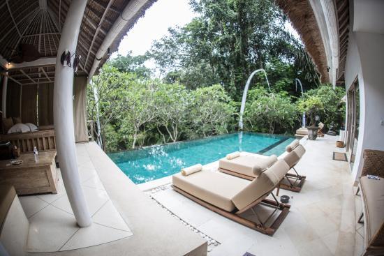 sungai gold pool luxury villa canggu bali mindythelion rh tripadvisor com