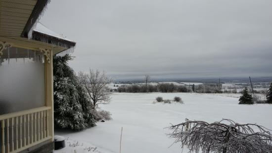 Creemore, Canadá: Morning after the ice storm - looking out from the porch