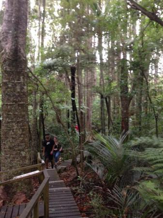 Warkworth, New Zealand: 遊歩道