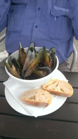 Havelock, Nova Zelândia: Green lipped mussels for all...