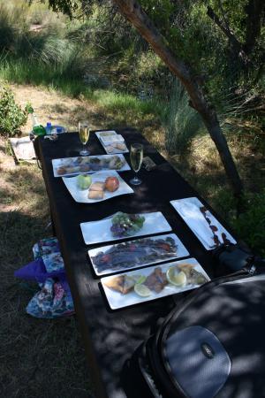 Modimolle (Nylstroom), Südafrika: Bush style picnic