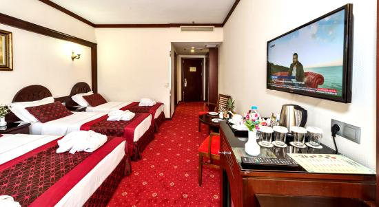 Gulhane Park Hotel: Quadruple Room1