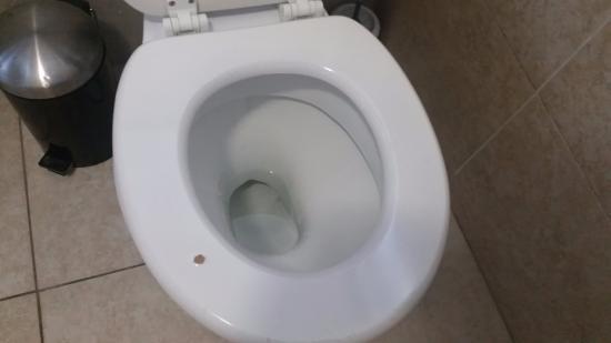 paint on the toilet seats are peeling and discoloring looks rh tripadvisor com
