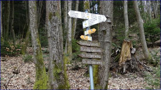 Chemin des Moulins