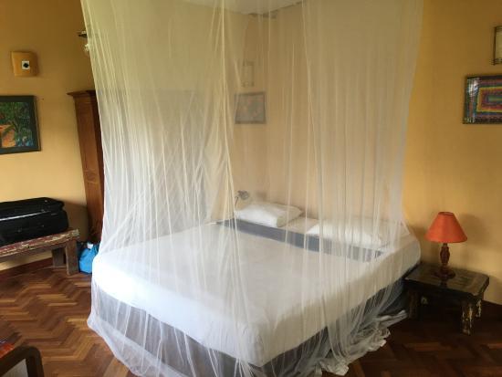Villa Rosa: Room