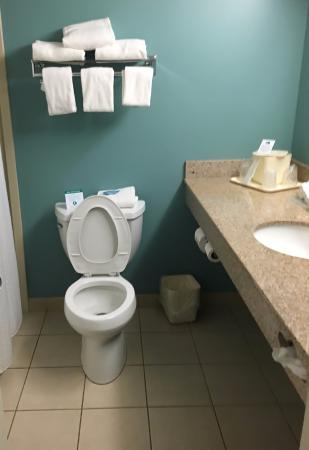 Holiday Inn Express Cape Coral/Fort Myers Area: Simple & Clean